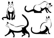 Line art set of cat Royalty Free Stock Image