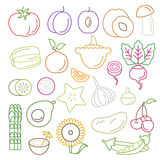 Line art vector graphical fancy food set of fruit and vegetable. Line art flat graphical style high quality fruit vegetable icon set. Apple lemon pomegranate stock illustration