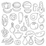 Line art vector graphical fancy set of fruit and vegetable Royalty Free Stock Image