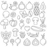 Line art vector graphical fancy set of fruit and vegetable Stock Images