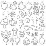 Line art vector graphical fancy set of fruit and vegetable. Line art flat graphical style fancy quality set of fruit and vegetable set hipster style. Apple lemon stock illustration