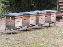 A line of behives - national design. A line of behives in a field royalty free stock photos