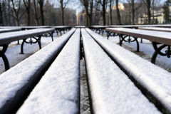 Line of benches in the park covered with snow in winter Stock Image