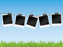 Line of blank photographs. Stock Photos
