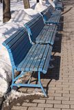 Line of blue benches in winter park Stock Images