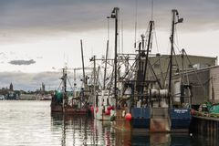 Line of boats along Homer`s Wharf royalty free stock photography