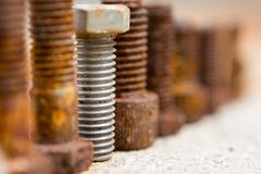 Line of bolts. On concrete Royalty Free Stock Photography