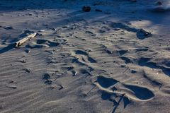 Line of prints in sand. A line of boot prints in flat rippled sand Royalty Free Stock Images