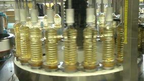 The line for bottling of vegetable oils stock video