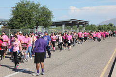 Line of breast cancer walkers Stock Images