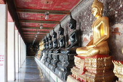 Line of Buddha statue. At the temple in Thailand Stock Photography