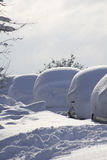 Line of buried cars. A photograph of a line of cars all buried in the snow. Shot under natural lighting conditions, composed for copy space provided in the snow Royalty Free Stock Images