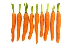 Line of carrots over white Royalty Free Stock Photography