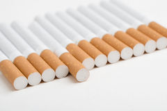 A line of cigarettes on white Royalty Free Stock Photo