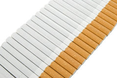 Line Of Cigaretts. A line of isolated cigaretts on white background Royalty Free Stock Images