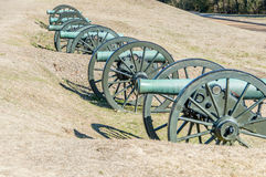 Line of Civil War Cannon Stock Image
