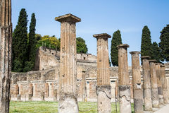 Line of Columns by Grass Lawn in Pompeii Royalty Free Stock Image