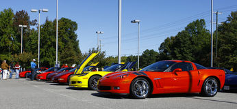 A line of Corvettes Stock Image