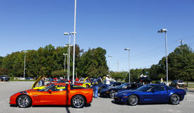 A line of Corvettes Royalty Free Stock Photography