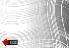 Line curve gray color geometric abstract on background, Vector Illustration.  Stock Photography