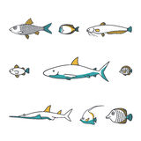 Line design vector fish icon set. Stock Images