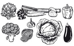 Line drawing of assorted vegetables Royalty Free Stock Photography