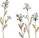 Line drawing flowers and grass Stock Image