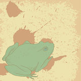 Line drawing frog on vintage background with spots Royalty Free Stock Images