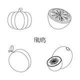 Line drawing fruits Royalty Free Stock Images