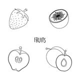 Line drawing fruits Royalty Free Stock Photos