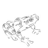 Line Drawing of a Golden Frog Royalty Free Stock Photo