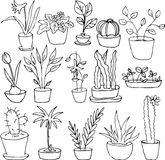 Line drawing home plants. Hand drawn vector illustration Royalty Free Stock Images