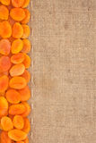 Line,dried apricot and burlap for the menu Royalty Free Stock Photography