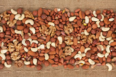 Line,dried nuts  and burlap Royalty Free Stock Image