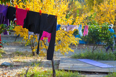 Line of drying casual clothing of adults and children in Garden Stock Image