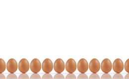 Line of eggs Royalty Free Stock Photos