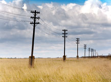 Line of electricity transmissions - in the field Stock Images