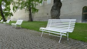 Line of empty white benches in the park stock image