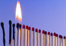 Line of Fire. A line of matches, stood to attention, first two burnt, second two alight, others receding into distance as if queing stock images