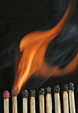 In the Line of Fire. Close up of a line of matches Royalty Free Stock Photo