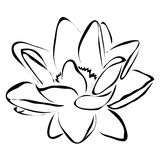 Line flower lotus vector image. Can be use for logo and tattoo stock illustration