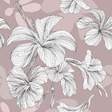 Line flower seamless. Thais is illustration of flower pattern seamless Royalty Free Stock Image