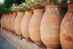 Line flowerpots in a garden Stock Photography
