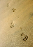 Line of Footprints. Footprints on a golden beach Stock Photo