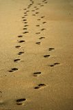 A Pair of footprints royalty free stock images