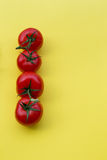 Line of four tomatoes on yellow background, copy Royalty Free Stock Images