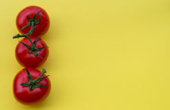 Line of four tomatoes on yellow background, copy Royalty Free Stock Image