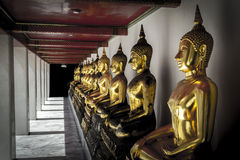 Line of Golden Buddha statues. In Wat Pho, Bangkok, Thailand Royalty Free Stock Images