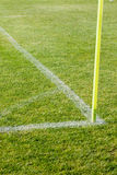 The line on the grass on the football pitch Royalty Free Stock Photo