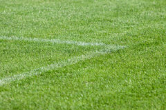 The line on the grass on the football pitch Royalty Free Stock Photos